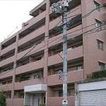 ダイアパレス海田 外観。15階建ての3階部分です。(外観)