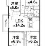 常磐CO-OPマンション 専有面積80.14㎡。4LDKの間取です。